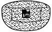 6455-463-front.jpg